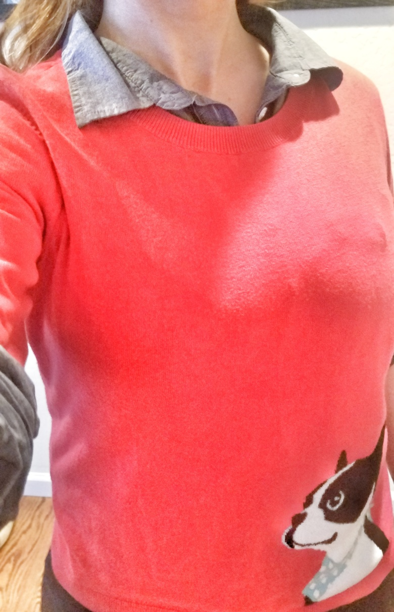 Red Sweater with Chambray Shirt Underneath