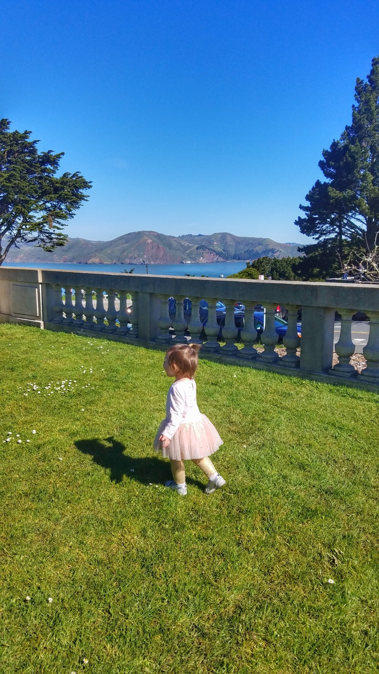 The View at the Legion of Honor