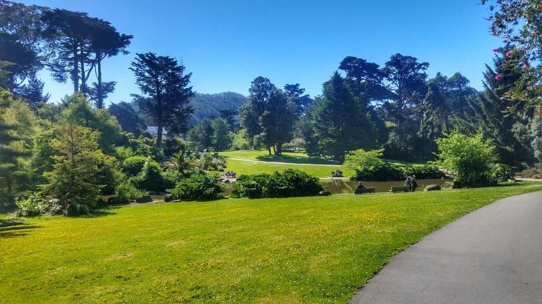 An Overview of the San Francisco Botanical Garden