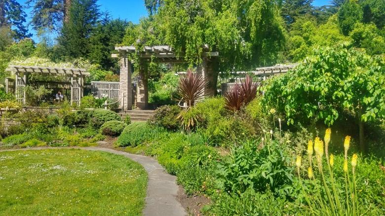 The Perennial Garden at the San Francisco Botanical Garden