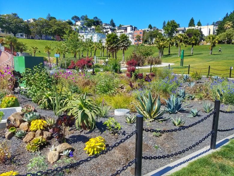 Mission Dolores Park Garden
